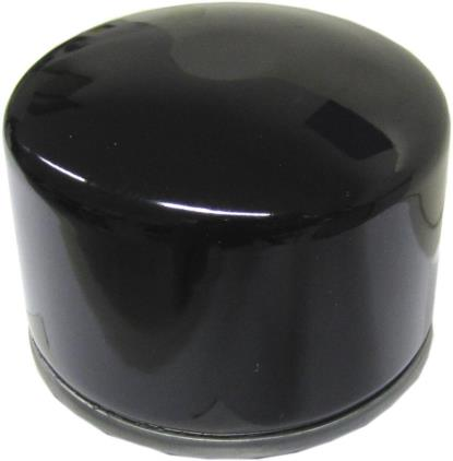 Picture of MF Oil Filter (C) BMW F800 09(HF165)