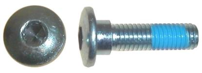 Picture of Bolts Disc Allen 8mm x 30mm Kawasaki Rear Discs (pitch 1.25mm) (Per 10)
