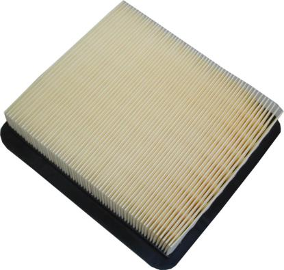 Picture of Air Filter Armstrong