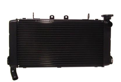 Picture of Radiator Honda CBR600F 1991-1994 (Made In Japan)