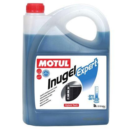 Picture of Motul Inugel Expert Coolant (-37oC) (4)